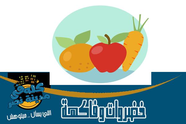 محلات خضروات وفاكهة في مدينة نصر