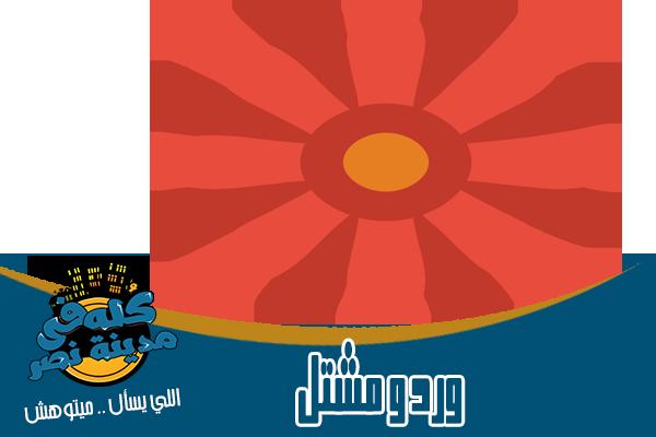 محلات ورد ومشتل في مدينة نصر